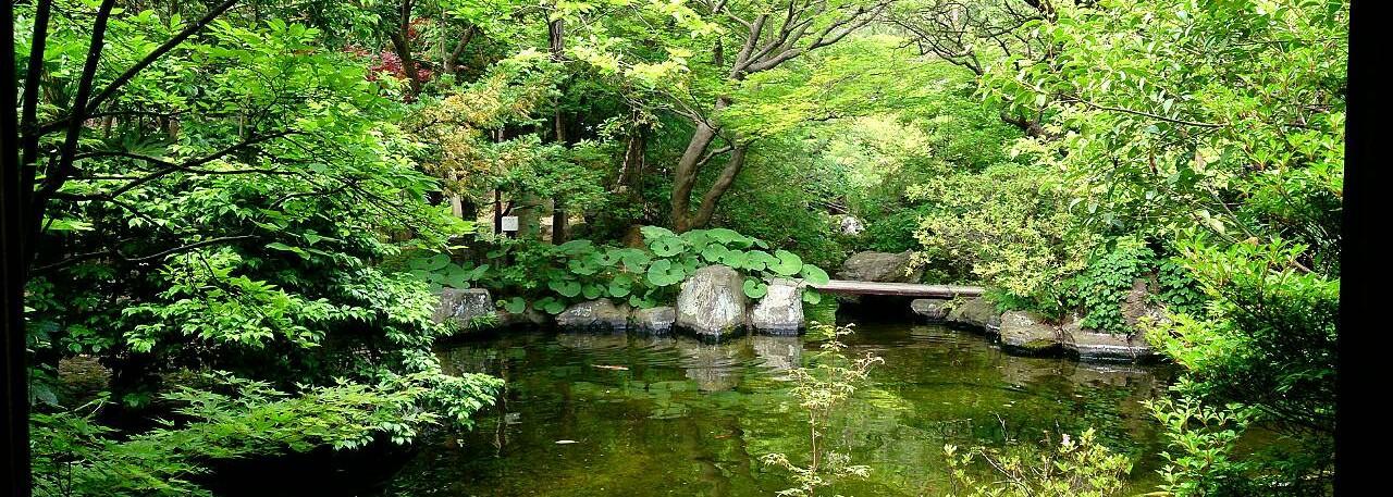 Rion-Seiryu